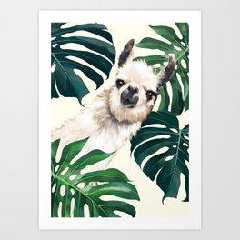 Sneaky Llama with Monstera Art Print