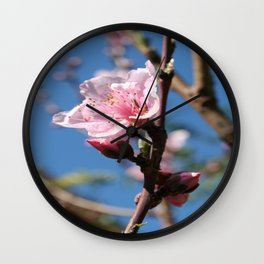 Delicate Buds of Peach Tree Blossom Wall Clock