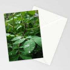 Receiving Stationery Cards