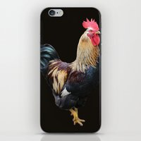rooster iPhone & iPod Skins featuring Rooster by Sean Foreman