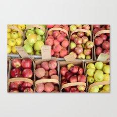 Apple Spectrum Canvas Print