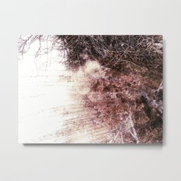 Embracing the Sun Metal Print