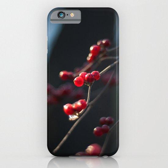 Winter Berries II iPhone & iPod Case