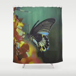 Black And White Butterfly On Red Flower IV Shower Curtain