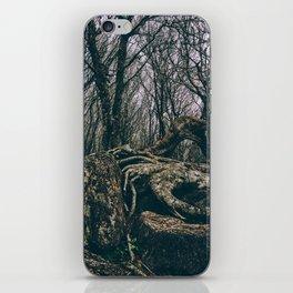 Craggy Knob iPhone Skin