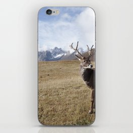Caribou On The Tundra iPhone Skin