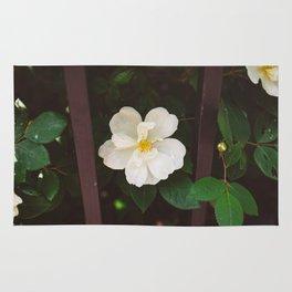 Manhattan Bloom Rug