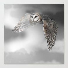 flying owl (tyto alba) Canvas Print
