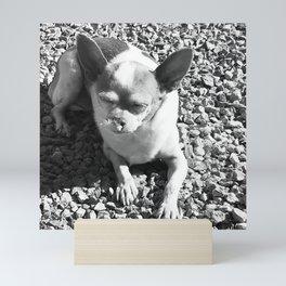Chi In Bliss Mini Art Print