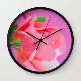 Macro pink rose flower Wall Clock
