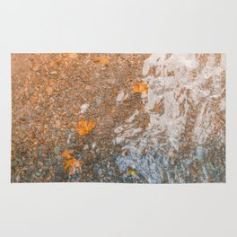 Water and foil Rug
