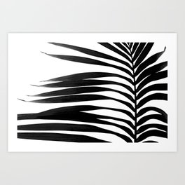 Tropical Darkroom #279 Art Print