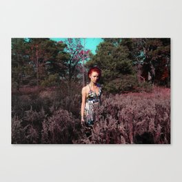 PINK FROST 3 Canvas Print