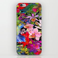 Hummingbirds Black iPhone & iPod Skin