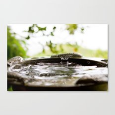 Rain Splash Canvas Print