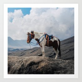 The Horse and the Volcano Art Print