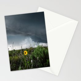 Stormflower - Sunflower and Storm in Texas Stationery Cards