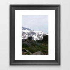 Washington Summer Framed Art Print