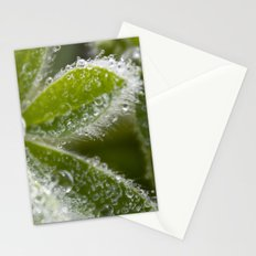 Morning Dew I Stationery Cards