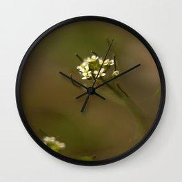 Closeup Wall Clock