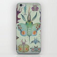 Cephalopodoptera Tab. I iPhone & iPod Skin