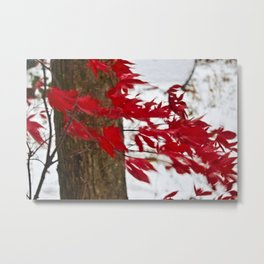 like a river of red Metal Print
