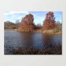 Pool of Iron Canvas Print