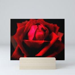 Dramatic Red Rose Flower Floral Decor Modern Art A589 Mini Art Print