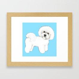 Bichon Frise Dog on blue Framed Art Print