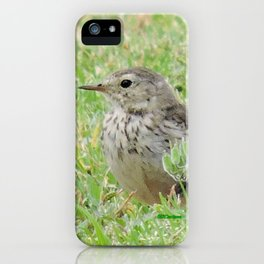 Pipit on the Lawn iPhone Case
