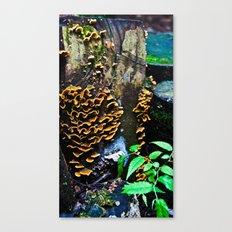 Tree Stump Mushroom Print Canvas Print