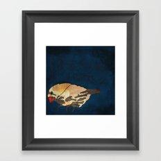 Finch on Blue Framed Art Print