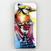 jay fleck iPhone & iPod Skins featuring Crazy Jay by Abby Diamond