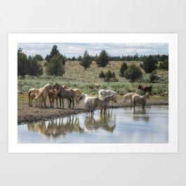 Wild Horses and Biting Flies Art Print