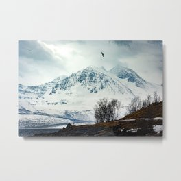 Arctic mountain Metal Print