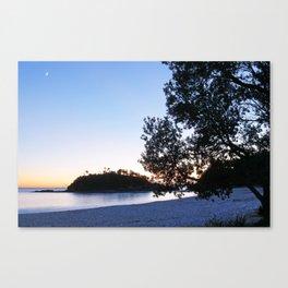 Seal Rocks Headland at Dawn Canvas Print