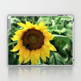 Flower No 6 Laptop & iPad Skin