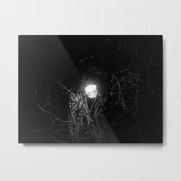 Lamppost and vine Metal Print