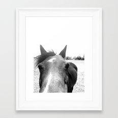 Horse Head V Framed Art Print