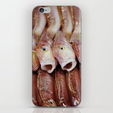 Lined Fish iPhone & iPod Skin