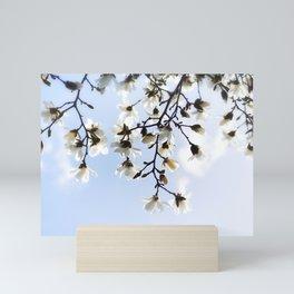 White magnolia blossoms sky Mini Art Print