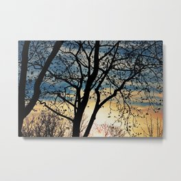 Leafless Tree in the Sunset I Metal Print