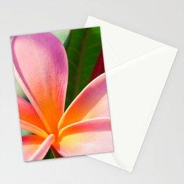 Pua Melia ke Aloha Pink Tropical Plumeria Maui Hawaii Stationery Cards