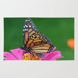 Regal Monarch Rug