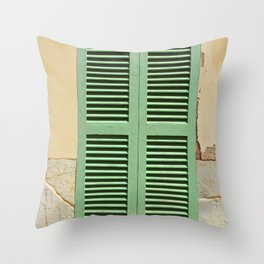 Green hatch in an old wall Throw Pillow