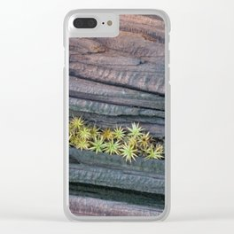 Tiny Succulents and Wood Texture Clear iPhone Case