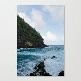 Cliffside Ocean View Canvas Print