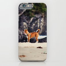 Dog at the beach Slim Case iPhone 6s