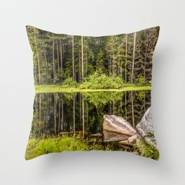 Quiet Forest lake Throw Pillow
