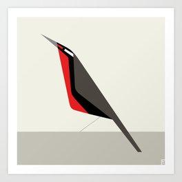 Loica chilena / Long-tailed meadowlark Art Print